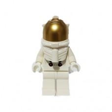 NASA Apollo 11 Astronaut