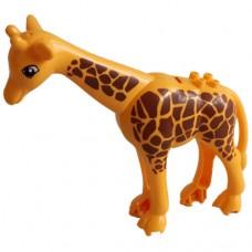 Žirafa 01